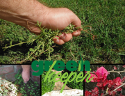 Green Keeper Landscaping